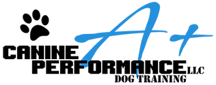 A+ Canine Performance LLC Logo Long Blac