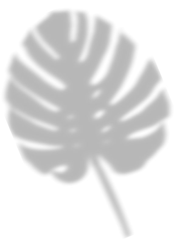 leafshadow.png