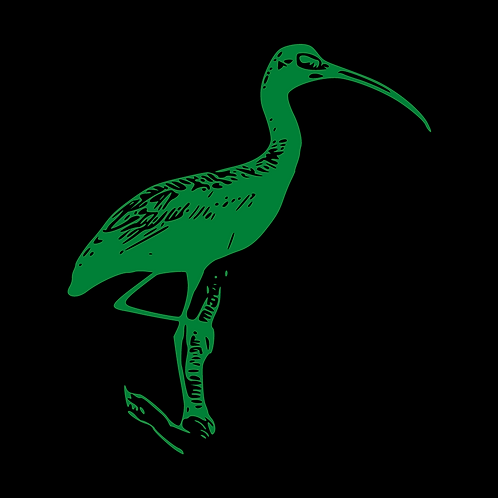Green Ibis GMAT/GRE Package