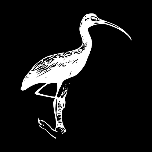White Ibis FINRA/Securities Package