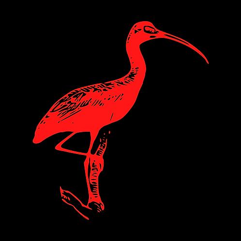 Scarlet Ibis GMAT/GRE Package