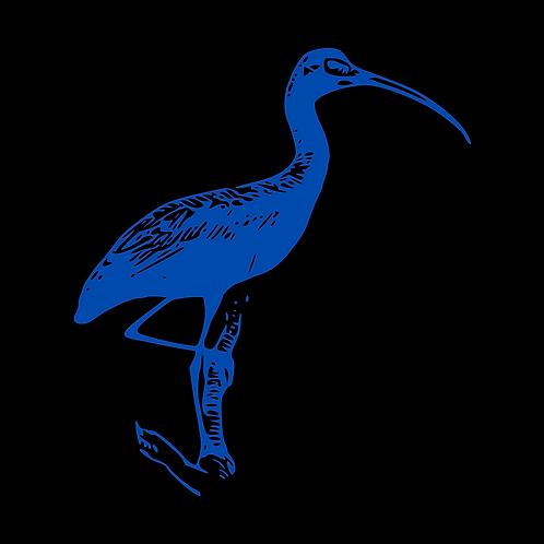 Blue Ibis FINRA/Securities Package