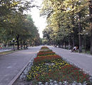 panfilov - Copy.jpg