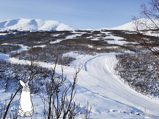Groomers with cartoon rabbit looking up mountain retrospectively