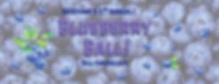 Blueberry web.jpg
