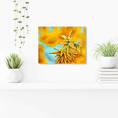 "A Burst of Yellow 11""x14"": Original nature art of yellow spring flowers"