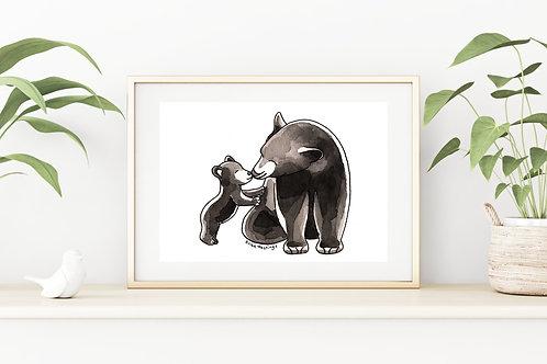 Mama Bear Fine Art & Canvas Prints