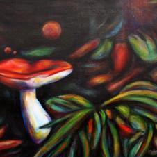 Mushroom Dance
