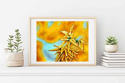 A Burst of Yellow Fine Art & Canvas Prints