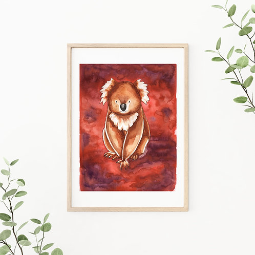 Koala King Canvas & Art Prints