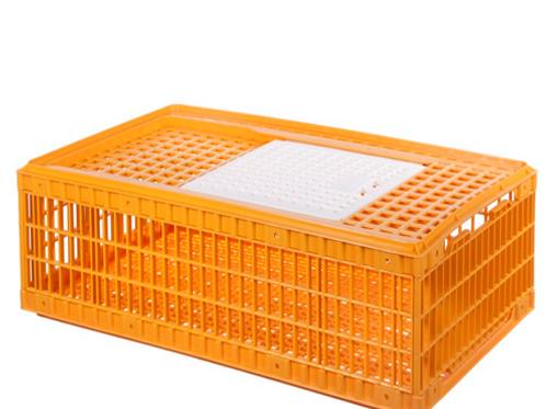 chicken carry basket