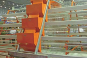 Automated layer cages