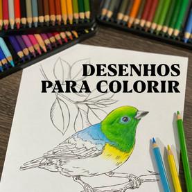 DESENHOS GRATUITOS PARA COLORIR