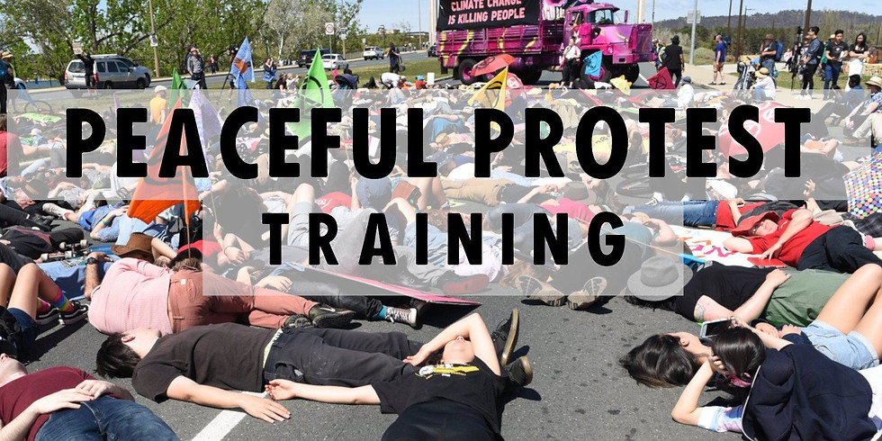 Peaceful Protest Training - EVENT CANCELLED OWING TO VENUE FLOODING....