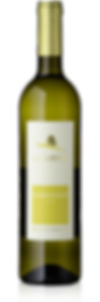 La Guérite Chardonnay - Maurice Gay