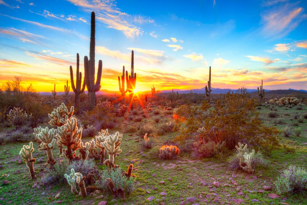 The sun rising over the Arizona desert