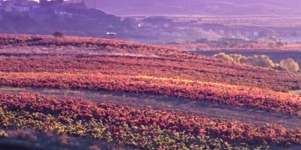 Carlos Serres Rioja Wine Tasting