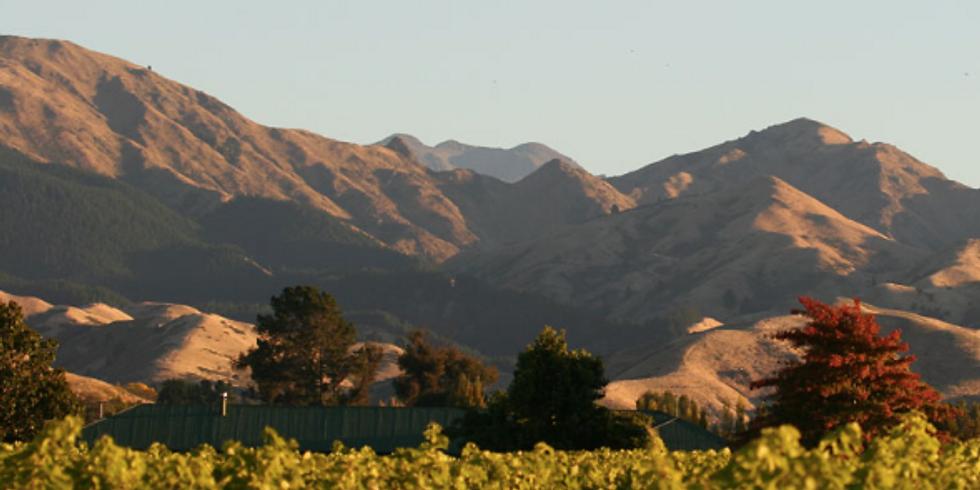 Steve Bird Wines of New Zealand