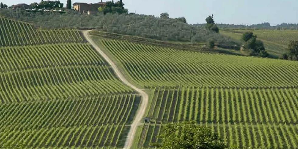 Rocca delle Macie Wines