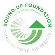 Round-up Foundation