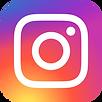Instagram_logo_2016.svg (1).png