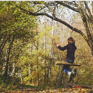 Herbst im Sihlwald.