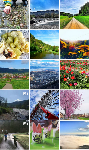 Leben in Adliswil auf Instagram