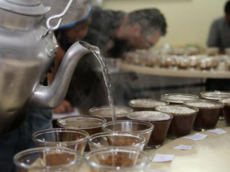14º Concurso de Qualidade dos Cafés de Poços de Caldas divulga vencedores