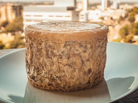 Considerações sobre bolores e leveduras em queijos
