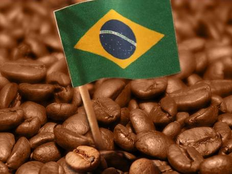 Brasil exporta 4,1 milhões de sacas de café e bate recorde para o mês de outubro