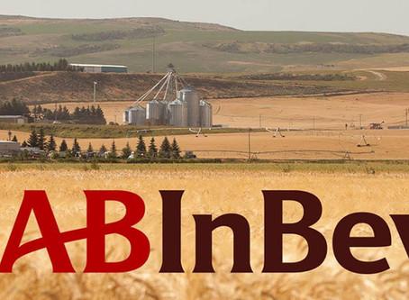 AB InBev busca sucessor para o brasileiro Carlos Brito