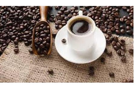 Projeto Campo Futuro apresenta custos da produção de café em Minas Gerais