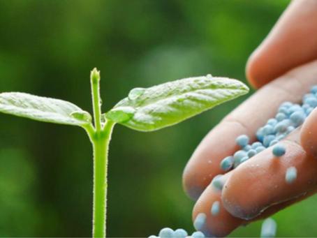 Conab destaca importação de fertilizantes nos cinco primeiros meses de 2021