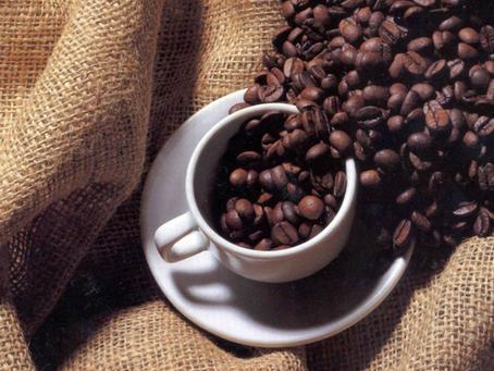 Produtora de Heliodora (MG) comemora aumento de 100% na produção com auxílio do ATeG Café+Forte