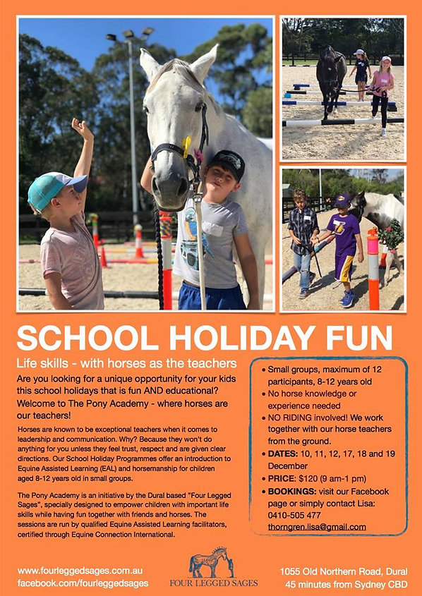 Four Legged Sages event - school holiday fun.  This December summer holiday period. Life skills for kids, with horses as their teachers