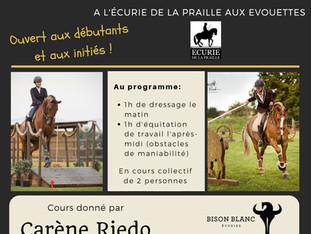 (COMPLET)   Stage d'Equitation de Travail avec Carène Riedo à l'Ecurie de la Praille