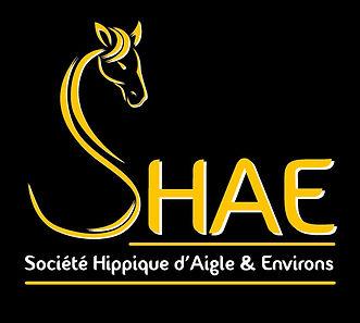 Logo SHAE sans site internet.jpg