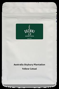 Australia Skybury Plantation Yellow Catual / 2 bags – Set