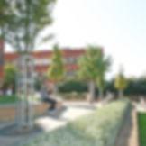 St Georges hospital landsvcape design 1.