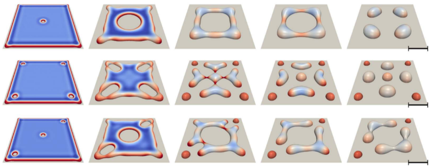 Solid-state dewetting of patterned patches (PF Simulations)