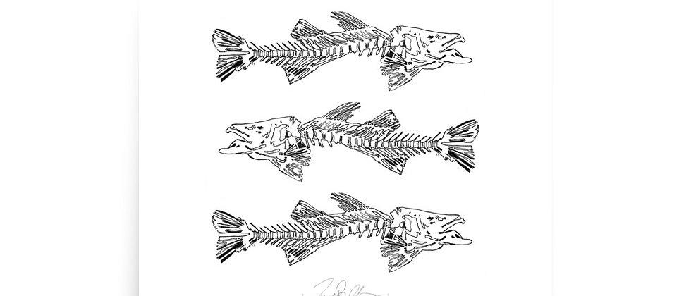 Fish Bone Poster