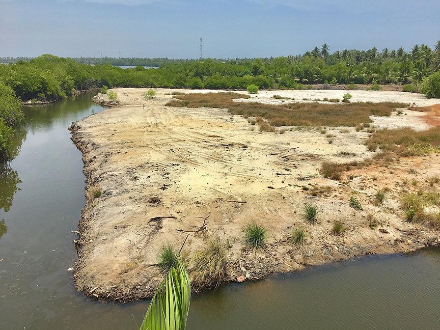 Negombo Lagoon Photo2.jpg