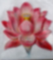 Waterland Lotus Villa