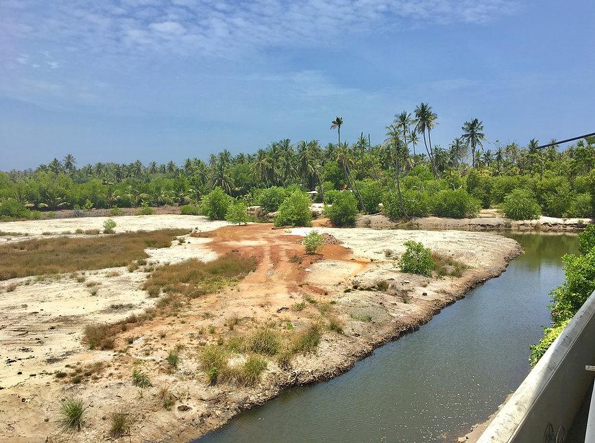 Negombo Lagoon Photo 1.jpg