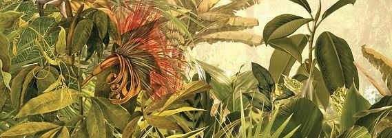 tropical-leaf-01_edited_edited_edited.jp