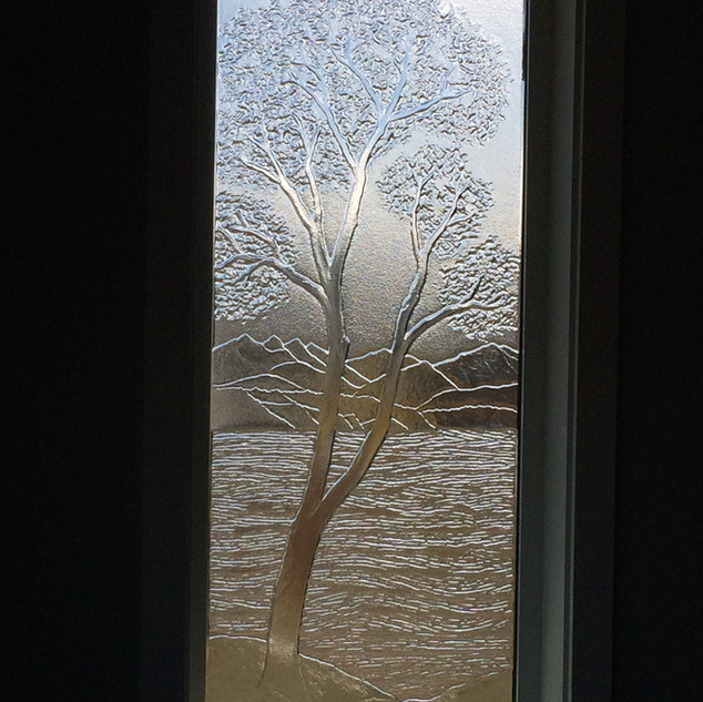 Arbutus Windows