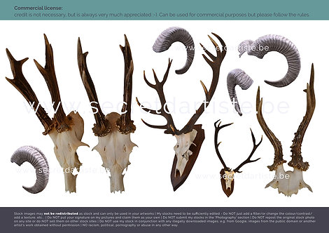 Instant download - PNG antlers, horns, ...