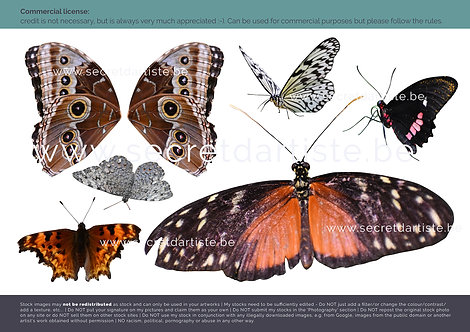 Instant download - PNG butterflies and wings