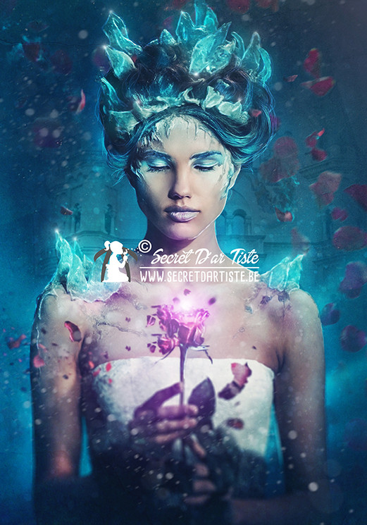 Tales untold - Belle & the enchanted rose