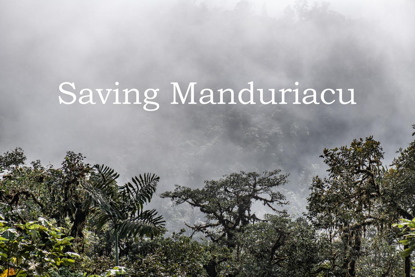 Saving the Río Manduriacu Reserve